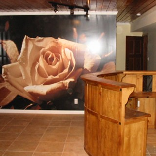 Digitally printed custom wall graphic applied in 3 sections to painted drywall.